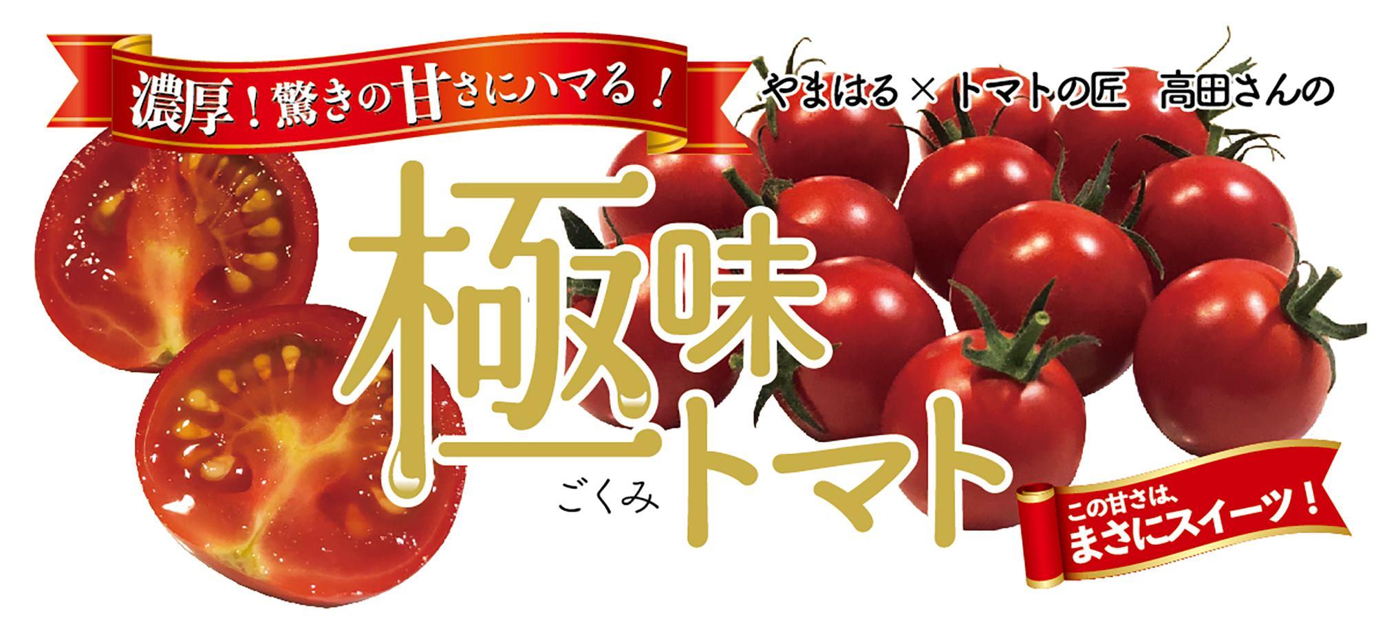 生鮮食品スーパー やまはる 極味トマト