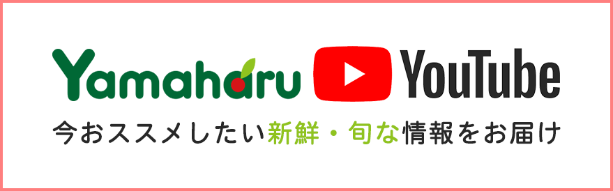 やまはるYouTubeチャンネル